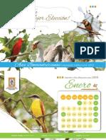 calendario_institucional_2015.pdf