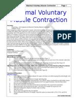maximum voluntary contraction MVC