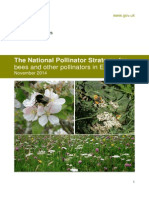 National Stretgy for Bees and Other Pollinators in England_November 2014