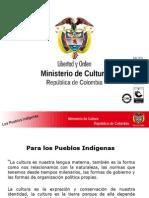 Indigenistas_ mincultura