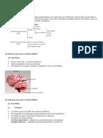 Sistema Nervoso I e II