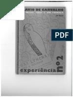 """Flávio de Carvalho """"Experiência Número 2"""""""