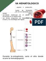 Sistema Hematologico