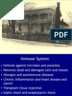 Innate Immune System