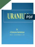 MGEI_IAGI_Indonesian_Uranium.pdf