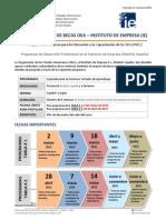 Convocatoria OEA-IE 2015