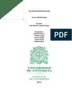 TALLER DE NEUROFISIOLOGIA-TERCER PARCIAL.docx