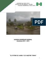 Plan de Desarrollo Villarica