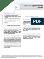 Resumen Módulo IV