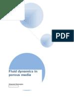Fluid Mechanics In Porous Media