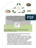 the possibility of hunting mourning doves in new york booklet