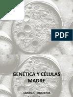 Final Genetica y Celulas Madre