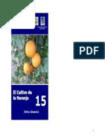 Cultivo De Naranja.pdf