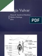 Patología Vulvar