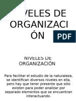 Niveles de Organización2