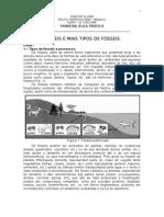 Aula_pratica_1_TIPOS DE F�SSEIS
