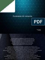 Economias de Variacion