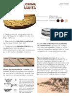 Los Diaguita Fernandez&Echenique
