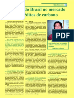 Chances Do Brasil No Mercado de Créditos de Carbono