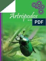 Guía de artrópodos