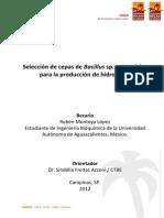 Enzimas Proteina Enzima Biotecnologia Sustratos Sólidos Consideraciones practicas Manual Produccion COndiciones de crecimiento