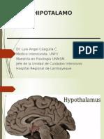 Hipotálamo, Cerevelo, SNA, Vía Piramidal y Reflejos