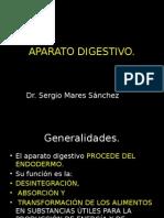 Anatomia y Fisiologia Gastroenterologia