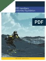 DIY Members Voluntary Liquidation