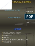 2 Histologi Jantung