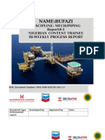 Bufazi. Biweekly Report
