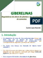 GIBERELINAS 2013.pdf