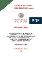 DFIFA_Sanchez_Martin_C_Capacidad.pdf