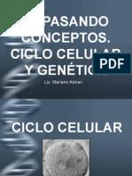 Clase Genética