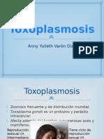 3. Toxoplasmosis