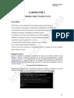 L1  Expresii fundamentale   vectori si matrici.pdf