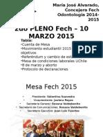 Pleno Fech – 10 de Marzo 2015