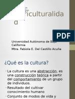 Pluriculturalidad.pptx