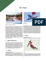 Ski Alpin Beim alpinen Skirennen (kurz Ski Alpin)
