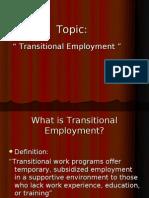 Transitional Employment