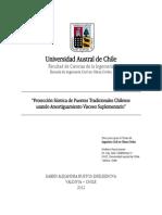 Protección Sísmica de Puentes Tradicionales Chilenos usando FVD