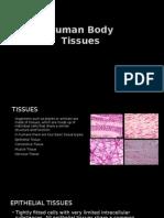 human body tissues powerpoint