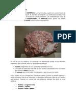Rocas Sedimentarias Detriticas