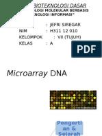 Tugas Bioteknologi Dasar (Microarray DNA)