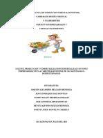 Informe Hostalizas Foreskhor Revisado 110713