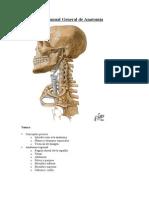 Apunte de Generalidades de Anatomia UFT