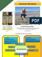 Clase 2 Microbiologia Aplicada a La Mineria