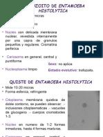 2do Lapso de Parasitología.