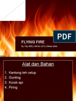 Flying Fire