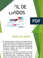 (14) Perfil de Lipidos