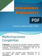 malformacionescongnitas-121023054257-phpapp01